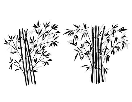 Bambus, isoliert auf weißem Hintergrund, hohe Auflösung Standard-Bild - 65183073