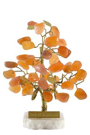 Tree of happiness photo