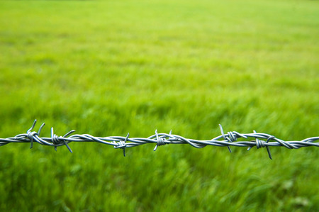 deterent: Barbed wire fence against out of focus green field Stock Photo