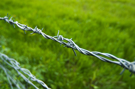 barbed wire fence: Close up of barbed wire fence in field.