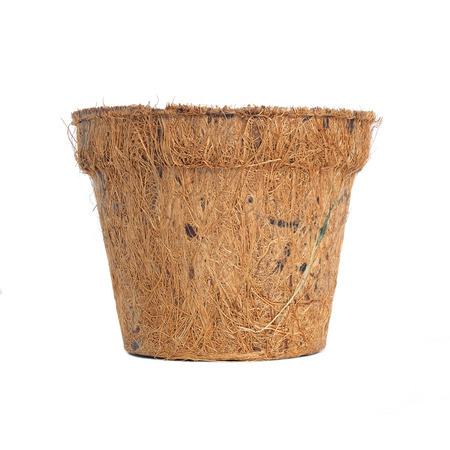 biodegradable: Biodegradable plant pot made from coconut husk, isolated on white background