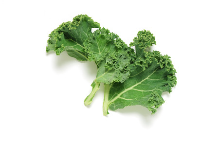 white background: Piece of fresh Kale on white background, shot from above