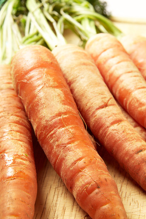 bunched: Close up of a bunch of organic carrots