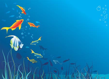 profundidad: La vida subacu�tica, mar. El pescado, algas, burbujas. Espacio para el texto. Ilustraci�n vectorial