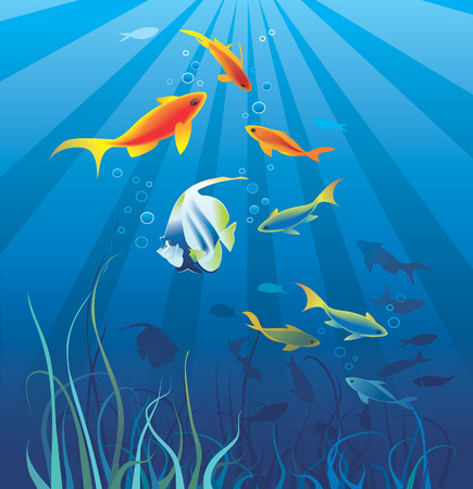 Sea  life. Fish, seaweeds, bubbles. Copy space for text. Vector illustration