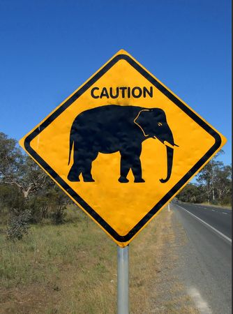 Beware of elephant