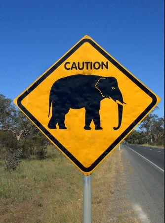 Beware of elephant