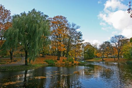 Riverbank on the bright autumn day (Riga, Latvia)