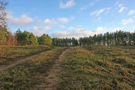 Road to the forest at autumn (Latgale region, Latvia) Stock Photo