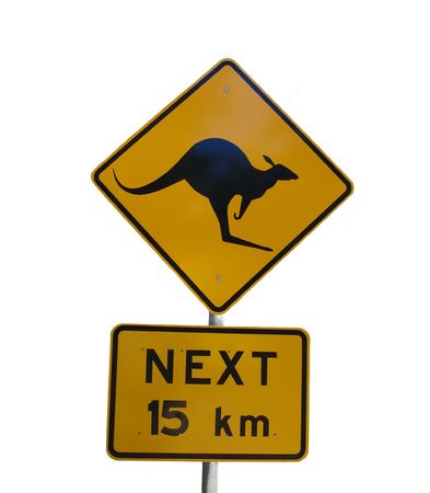 Australian kangaroo warning sign isolated on white