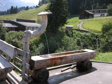 trough: Drinking Trough in Murren, Switzerland