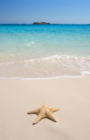 A starfish besides sea shore on a beach with white sand and blue water. Stock Photo - 3121983