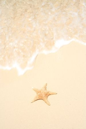 A starfish besides sea shore on a beach with white sand and a strong wave approaching. Stock Photo - 4457082