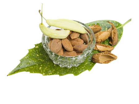 Almond nuts with a shell on green to a leaf on a white background Stock Photo - 1000203