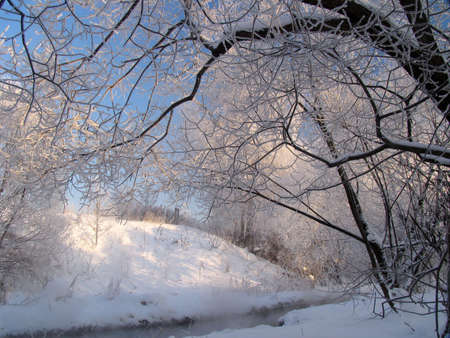 Winter landscape with the river and snow photo