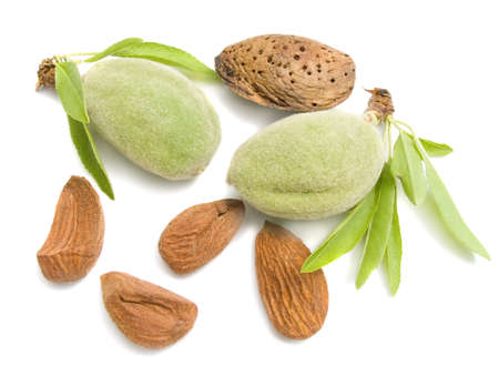 Young almond with nucleus on a white background isolated