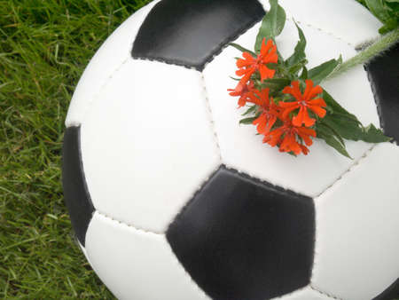 Soccer ball on a lawn from a green grass with a red flower Stock Photo - 3225913