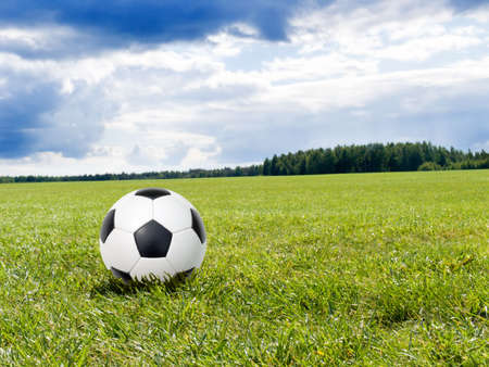 soccer ball on a natural lawn photo