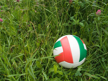 soccer ball on a natural lawn Stock Photo - 5277666