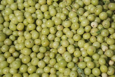 groseille � maquereau: indian gooseberry