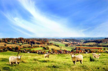 Rural scenery in Somerset, UK Stock Photo