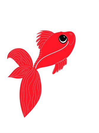 fantail: Goldfish (Fantail Oranda) Illustration