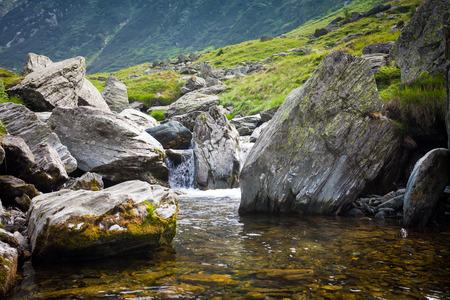 forest stream: Forest stream surrounded by vegetation running over rocks
