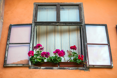 old center: Pink facade with windows and flowers from Sighisoara city old center, Transylvania, Romania