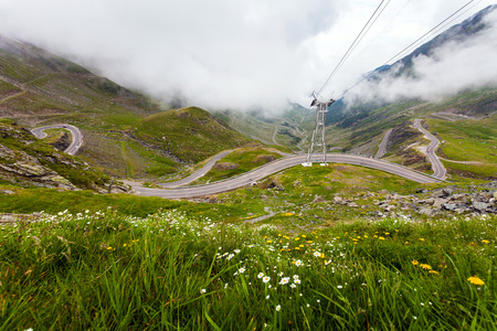 transfagarasan: Transfagarasan mountain road with wild flowers from Romaniacovered with fog Stock Photo