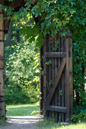 rambler: Opened wooden gate decorated with green climbing plant.