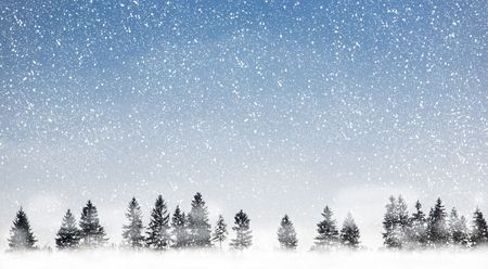 View of christmas trees through snow. Blue sky, snowflakes, trees and fog. photo