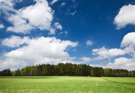 Blue sky with clouds, green grass and forest on low hill. Stock Photo - 3020932