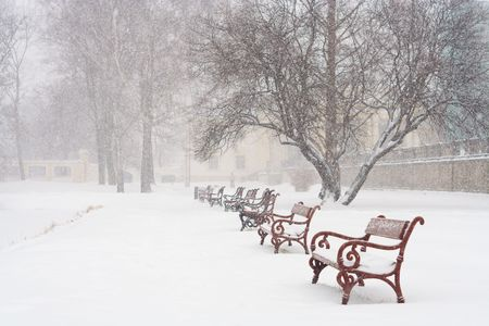 Red benches in row covered with snow. Snowing. Stock Photo