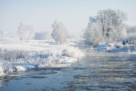 snowlandscape: View of frozen trees and river. Landscape covered with snow. Winter scene.