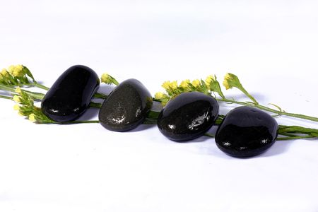 destress: nice natural pebble and flower. suitable for spa and relaxation setting Stock Photo