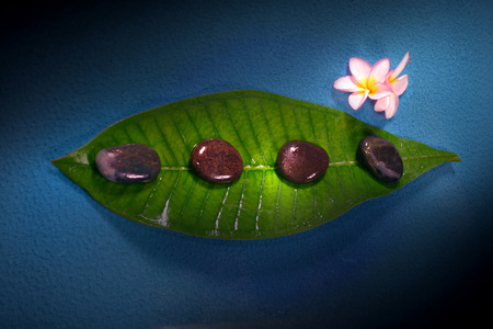 destress: Frangipane flower with pebble.