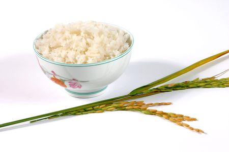 rice plant: rice bowl on the white background