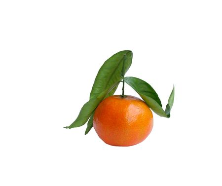 Tangerine isolated on pure white background  photo