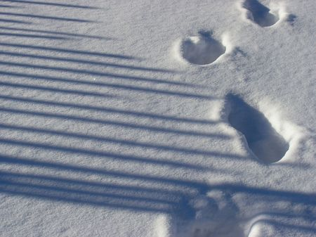 Winter photo moment. The steps in the snow. photo