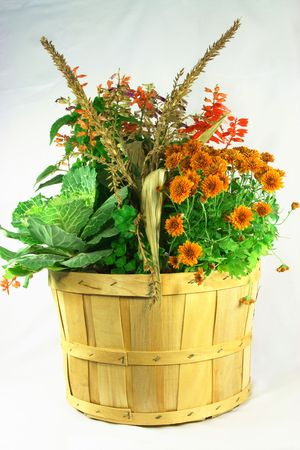 bushel: Picture of fall flowers and plants in bouquet planted in bushel.