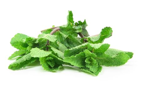 flavouring: Fresh Mint. Mint (Mentha) a strongly-scented herbs, some of which are used for flavouring.