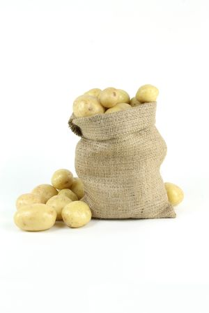 On pile and in burlap bag fresh mini white potatoes - vertical orientation. Still life picture.