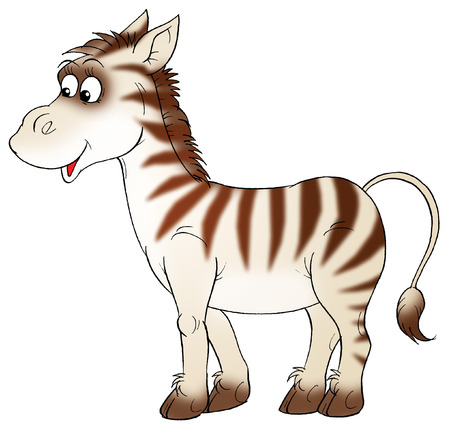 horse drawn: zebra