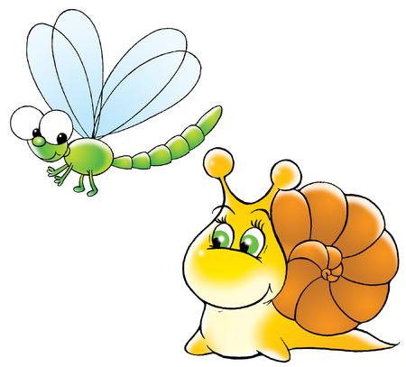 snail and dragon-fly photo