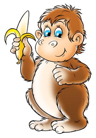 kiddish: monkey