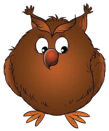 ridiculous: Brown owl Stock Photo