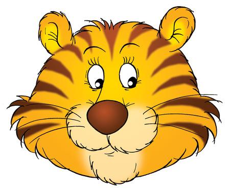tiger cub: tiger