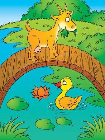 pato caricatura: Cabra y el pato  Foto de archivo