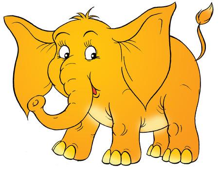 elephant Stock Photo - 1592680