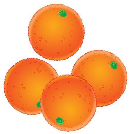 kiddish: Oranges Stock Photo